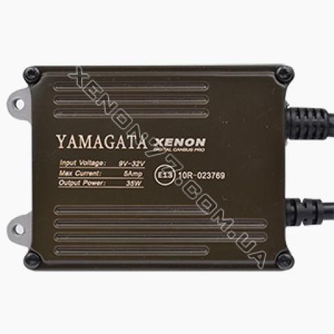 Блок розжига YMG (12v-24V)